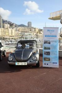 Beetle in Monte Carlo
